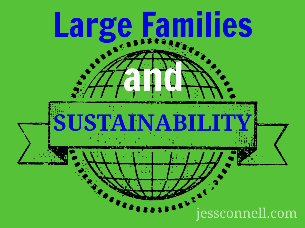 Large Families & Sustainability: one family's experience
