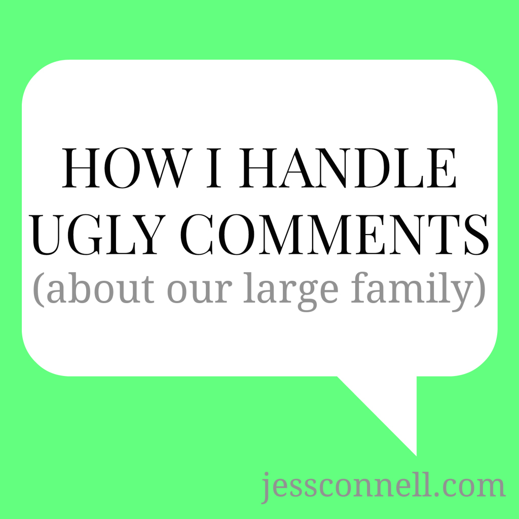 large family comments, large families