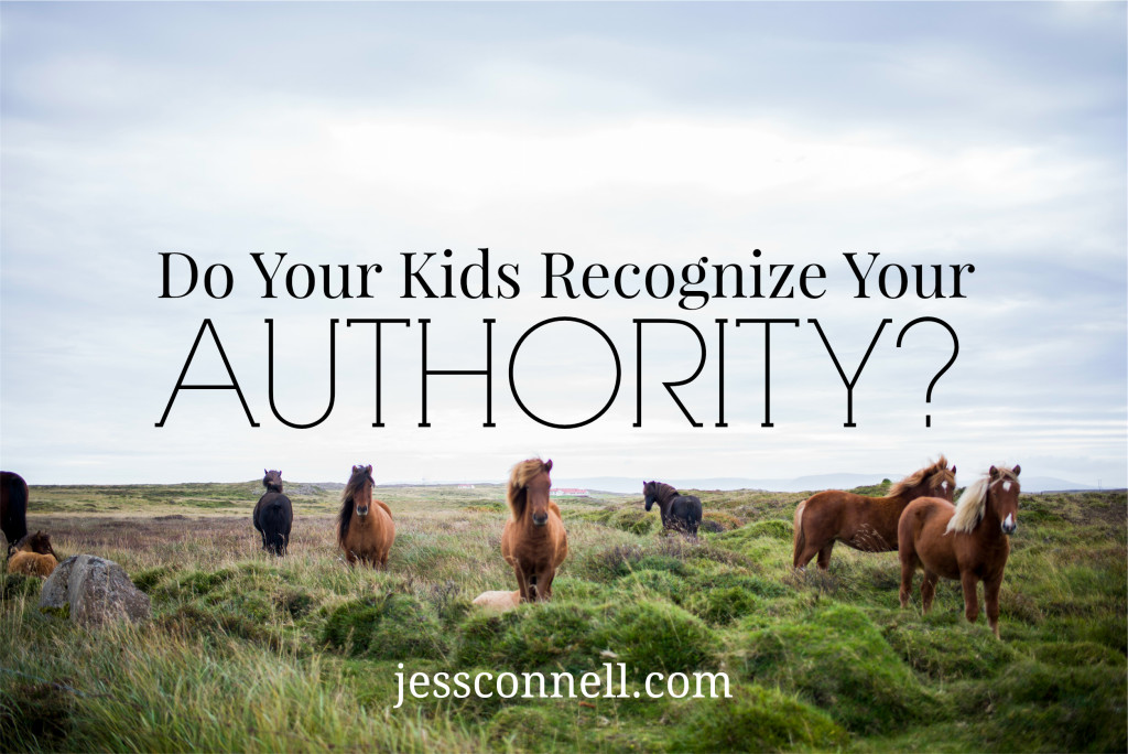 Do Your Kids Recognize Your Authority // jessconnell.com