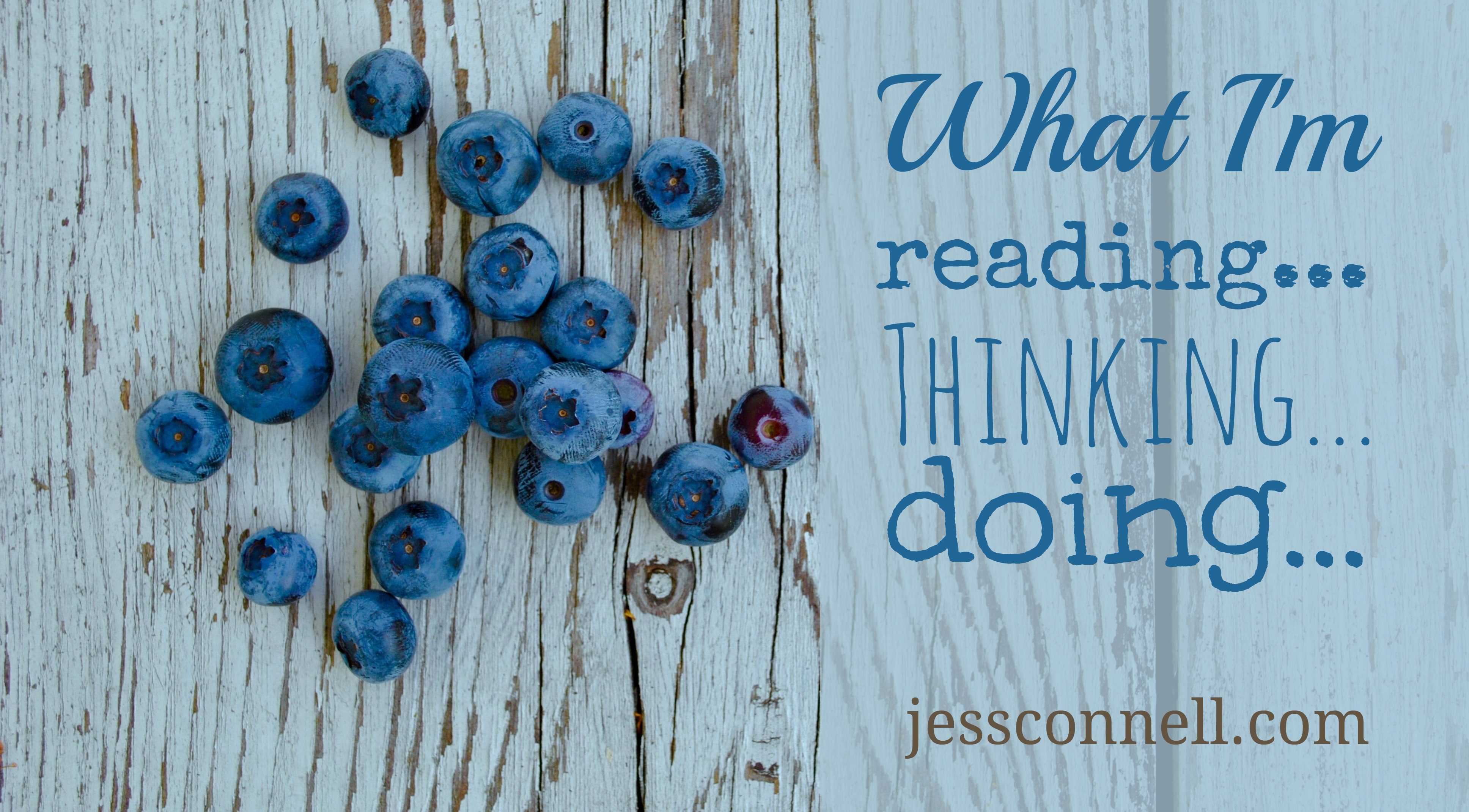 What I'm Reading, Thinking, Doing 7/25/15 -- jessconnell.com